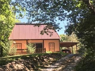 Single Family for sale in 305 Lake Viking Terrace, Gallatin, MO, 64640
