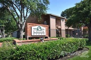 Apartment for rent in Creekstone Apartments, Dallas, TX, 75228