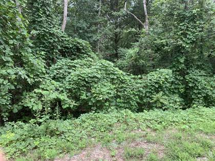 Lots And Land for sale in 312 Elohi Trace, Loudon, TN, 37774