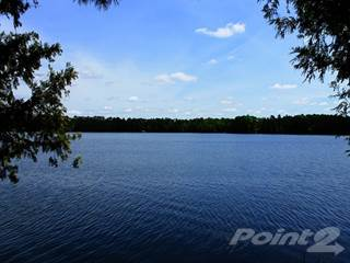 Land for sale in On Wilson Lake Drive W, Mercer, WI, 54547