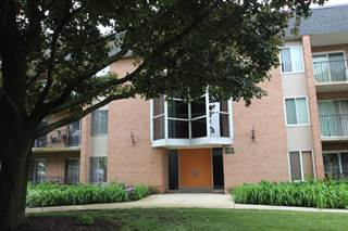 Condo for sale in 1052 North Mill Street 306, Naperville, IL, 60563