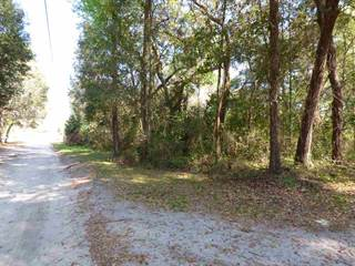 Land for sale in TBD NW 170 Street LOT 4, Trenton, FL, 32693