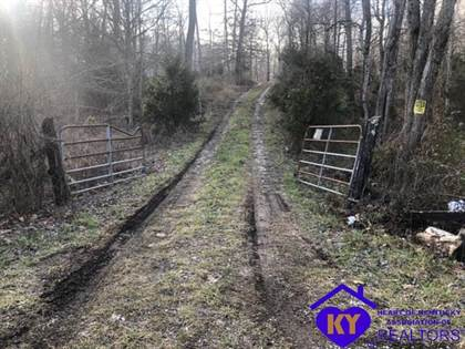 Lots And Land for sale in 1 Harris School Road, Rineyville, KY, 40162