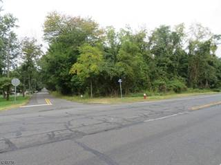 Land for sale in 0 202/206, Green Knoll, NJ, 08807
