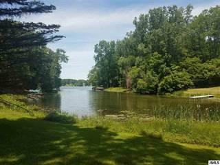 Land for sale in Lot 298 EASTSHORE DR, Clarklake, MI, 49249