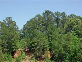 Land for sale in 00 CR 123, Jasper, TX, 75951