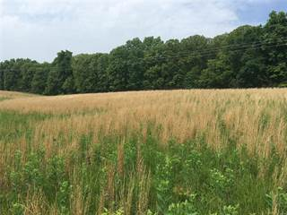 Farm And Agriculture for sale in 11 .75 acres m/l on East Hwy 47, Winfield, MO, 63389