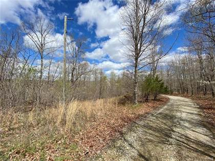 Lots And Land for sale in 0 Tract 2 Off Madison 9238, Fredericktown, MO, 63645