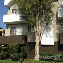 Apartment for rent in Crenshaw Townhouse, Los Angeles, CA, 90019