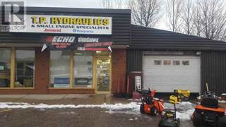 Comm/Ind for rent in 1 MALL DRIVE , Parry Sound, Ontario