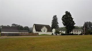 Residential Property for sale in 640 Artline Road, Eldred, PA, 16731
