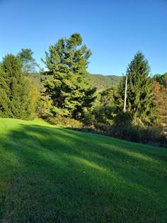Lots And Land for sale in 372 KLONDIKE RD, Warm Springs, VA, 24484