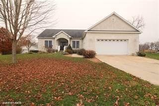 Single Family for sale in 105 East Pleasure Avenue, Ashkum, IL, 60911