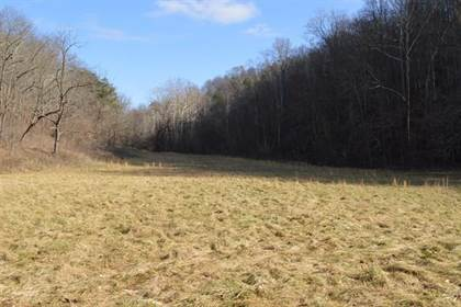 Lots And Land for sale in xxx Bukey Run Rd., Saint Marys, WV, 26170