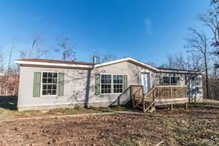 Single Family for sale in 1326 CR 521, Poplar Bluff, MO, 63901