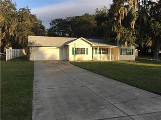 Single Family for sale in 32520 PURDUM AVENUE, Leesburg, FL, 34788