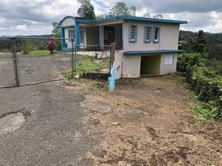 Single Family for sale in 0 124 SR KM 0.3 INT. MARAVILLA, Las Marias, PR, 00670