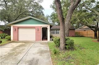 Single Family for sale in 6816 CIRCLE CREEK DRIVE N, Seminole, FL, 33781