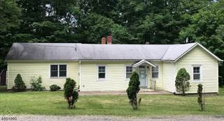 Single Family for sale in 17 Clove Rd, Montague, NJ, 07827