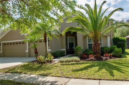 Residential Property for sale in 20414 WALNUT GROVE LANE, Tampa, FL, 33647