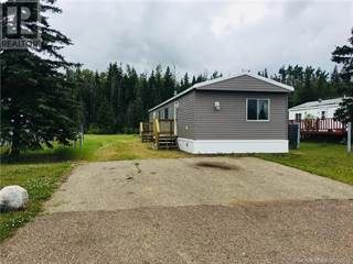 Single Family for rent in 313 9th SE Avenue, Manning, Alberta, T0H2M0