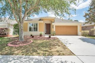 Single Family for sale in 489 Sea Holly Drive, Spring Hill, FL, 34604