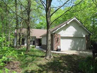 Condo for sale in 5243 FAWN HILL Terrace 91, Indianapolis, IN, 46226