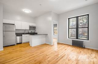 Apartment for rent in 944 Marcy Ave #2B - 2B, Brooklyn, NY, 11216