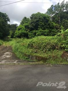 Lots And Land for sale in Black Forest, Vendome, St. George, Grenada, Vendome, Saint George