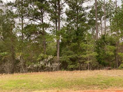 Lots And Land for sale in 0 STREET, Richland, GA, 31825