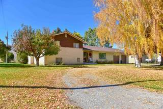 Single Family for sale in 3085 N 3350 W, Moore, ID, 83255