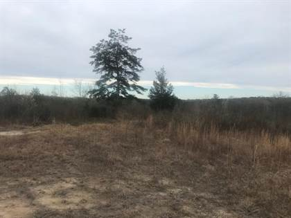 Lots And Land for sale in 58 Howard Brothers  Rd, Waynesboro, MS, 39367