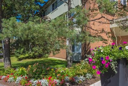 Apartment for rent in 241 Willett Street, Halifax, Nova Scotia, B3M 3L8