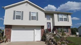 Single Family for sale in 114 Grant Drive, Jonesburg, MO, 63351