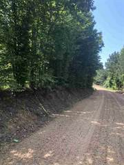 Land for sale in BEALE RD, Yazoo City, MS, 39194