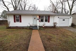 Single Family for sale in 513 Brooklane, Metropolis, IL, 62960