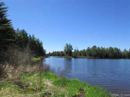 Residential Property for sale in 14069N Sadlers Loop, Seney, MI, 49883