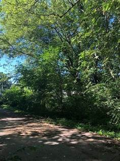 Lots And Land for sale in 0 N Cedar Lane, New Carlisle, IN, 46552