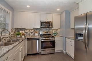 Single Family for sale in 1433 Boxwood Drive, Chesapeake, VA, 23323