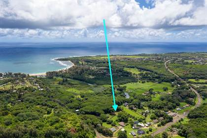 Residential Property for sale in 4492 ALIOMANU RD, Anahola, HI, 96703