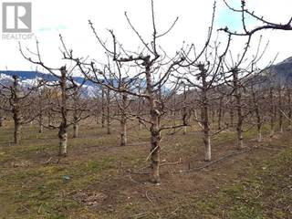 Farm And Agriculture for sale in 2567 HWY 3, Keremeos, British Columbia, V0X1N5