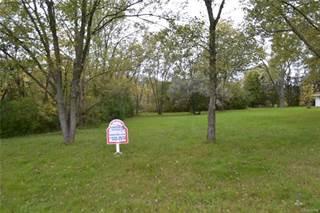 Land for sale in 0 Graham Road, Greater Swartz Creek, MI, 48532
