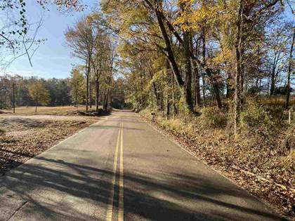 Lots And Land for sale in 0 OLD NATCHEZ RD, Hazlehurst, MS, 39083