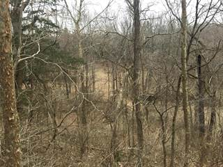 Land for sale in 4625 Vixen Circle, Pacific, MO, 63069