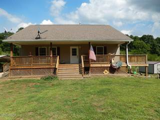 Single Family for sale in 23374 County Line Road, McClure, IL, 62957