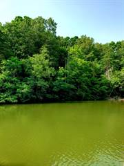 Farm And Agriculture for sale in LOT 54 SHAD RUN DR, Moneta, VA, 24121