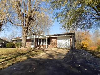 Single Family for sale in 325 East Dent Street, Ironton, MO, 63650