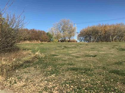 Vacant Land for sale in 4701&4703 46 STREET, Two Hills, Alberta, T0B4K0