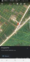 Residential Property for sale in Parcel 11442 - North Ambergris Caye residential lot with road access and utilities, Ambergris Caye, Belize