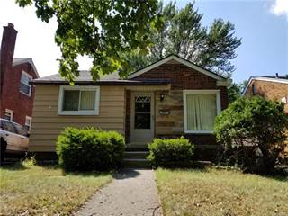 Single Family for sale in 10007 CHATHAM Street, Detroit, MI, 48239